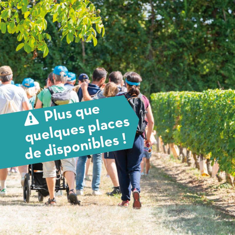 Anjou-brissac et coteaux-de-l'aubance